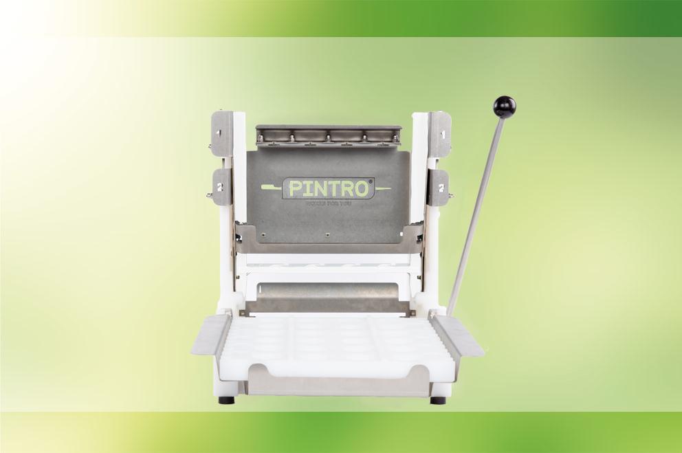 PINTRO P160 manual skewering machine
