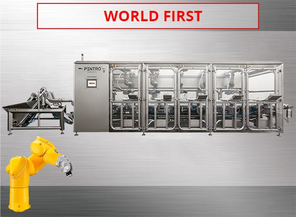 PINTRO Pick & Skewer fully automatic skewer machine
