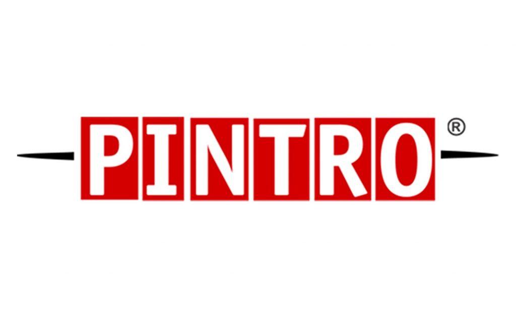2009 PINTRO eerste logo
